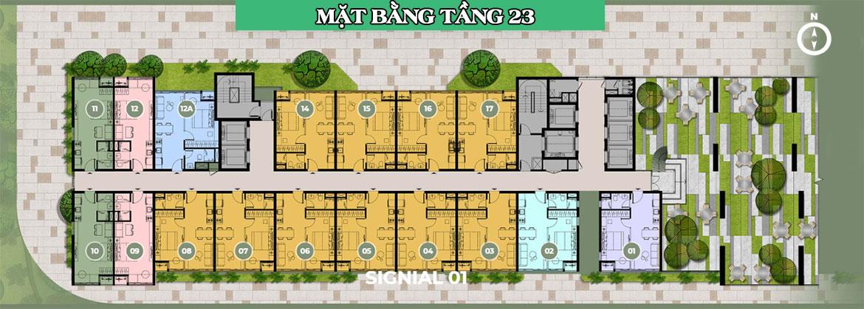 Mặt bằng dự án căn hộ chung cư Signial Quận 7 Đường Hoàng Quốc Việt chủ đầu tư An Gia
