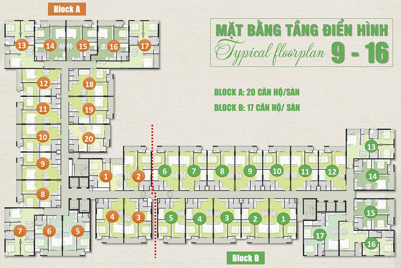 Mặt bằng dự án Căn hộ chung cư Ricca Quận 9 Đường Gò Cát Phường Phú Hữu